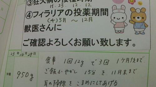 NEC_3638.JPG